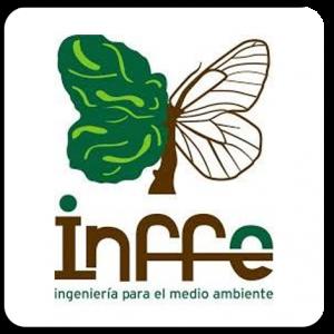 infee