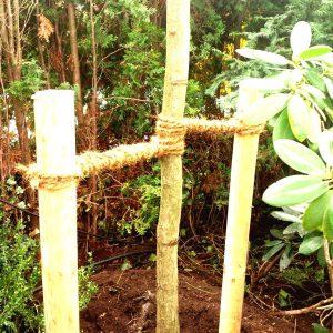 plantacion_1110x1480-boost